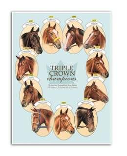 ALL 11 TRIPLE CROWN WINNERS horse racing equine ART thoroughbred