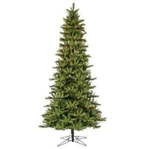 10 X 60 Slim Waconia Pine Dura 850cl Health & Personal
