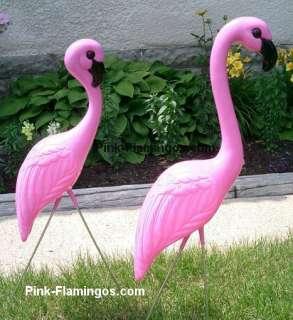 plastic pink flamingos. Plastic Pink Flamingos Comparison Chart