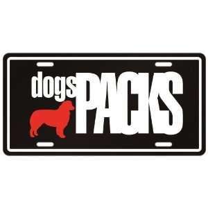 New  Australian Shepherd Dogs Packs  License Plate Dog:
