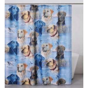 Casa Bella 2007 Labs Element Shower Curtain