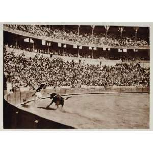 1928 Corrida de Toros Bullfight Bullfighting Bull Spain