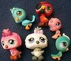 my littlest pet shop lot