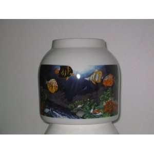 Tropical Fish Aquarium Home Improvement