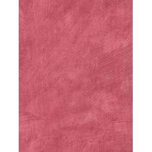 COLOUR BY DESIGN GIRLS Wallpaper  BC1581156 Wallpaper