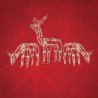 AND 24 LIGHTED DEER CHRISTMAS YARD DECORATION Explore similar items