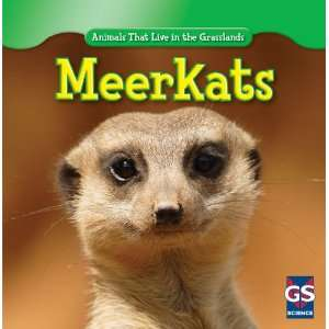 Meerkats (Animals That Live in the Grasslands